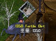 2006_0331_003